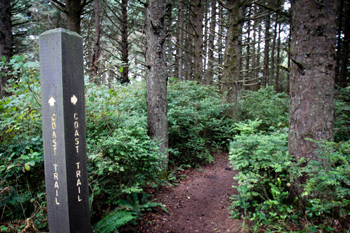 Oregon Coast Trail sign along forested trail