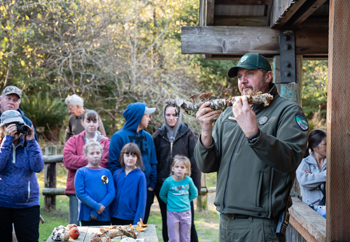 Learn about mushrooms this fall at Fort Stevens