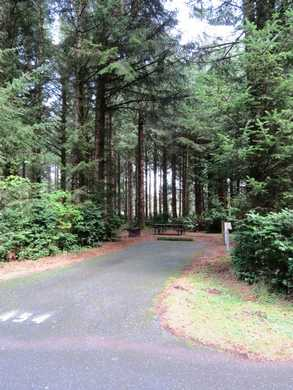 Cape Blanco campground