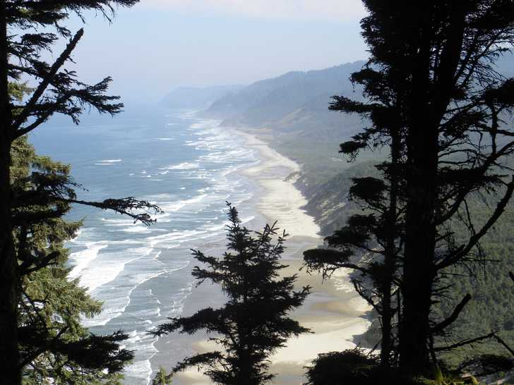 Washburne beach from Heceta Head Lighthouse Trail