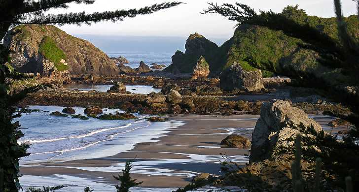 Harris Beach State Park Oregon Camping