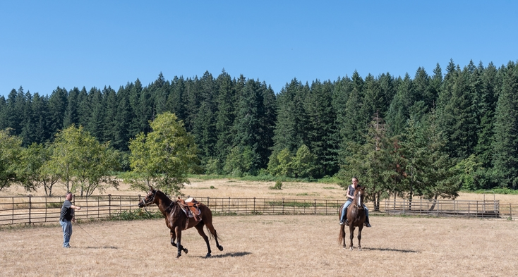 The park features a large horse arena and several training stations, plus 6 miles of riding trails
