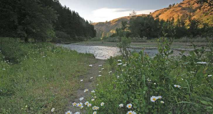Wallowa River-Area below Minam Campground