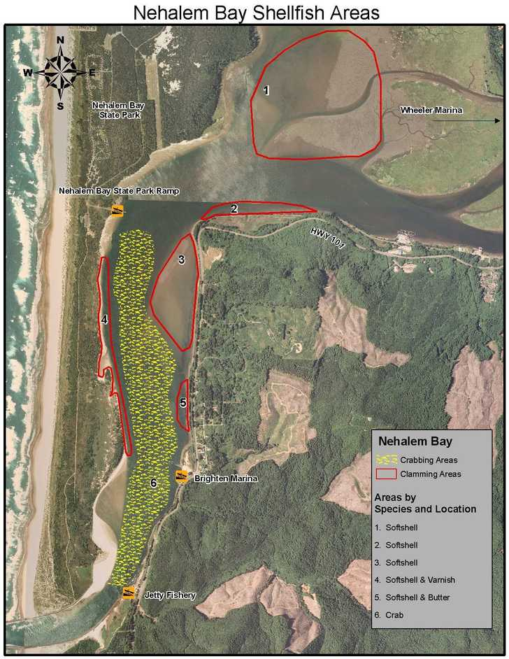 Nehalem Bay Shellfish Areas