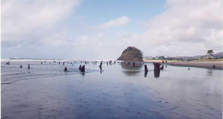 Neskowin beach state recreation site oregon state parks for Neskowin beach