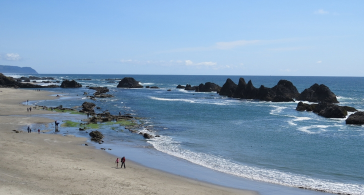 Seal Rock State Recreation Site - Oregon State Parks and Recreation