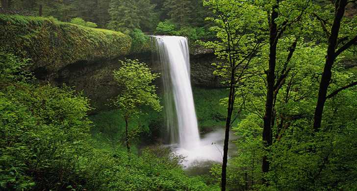 Silver Falls Ohio Map.Photos Videos And Brochures Silver Falls State Park Oregon