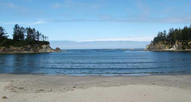 Dog Friendly Beaches Oregon
