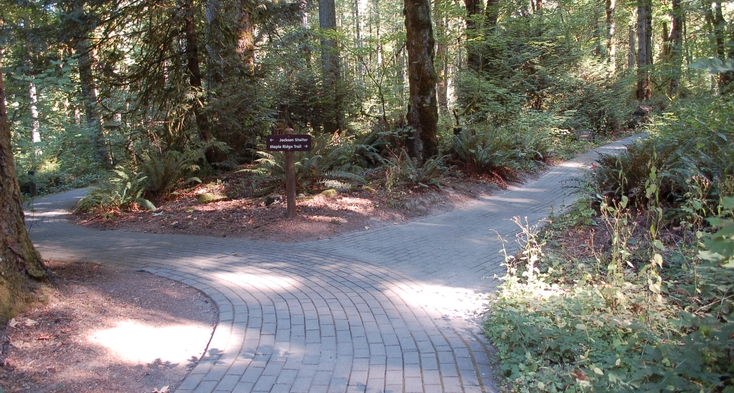 Trail with pavers with a sign to Glen Jackson Shelter and Maple Ridge Trail.