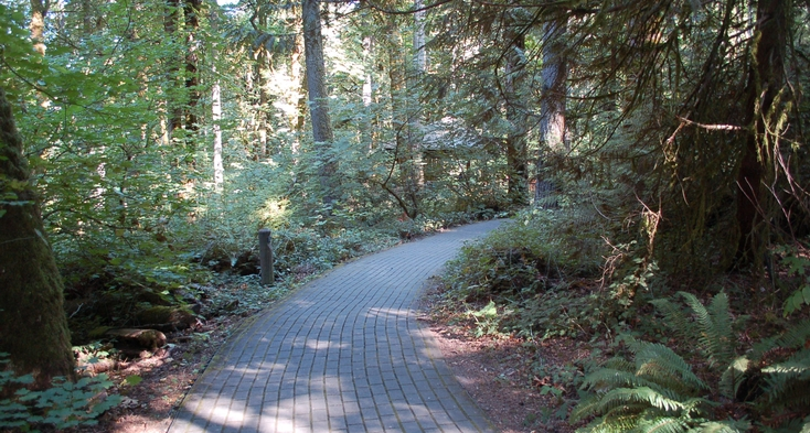 Trail with pavers to Glen Jackson Shelter.