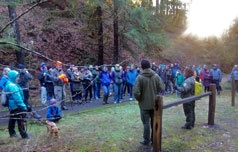 First Day Hikes set attendance record