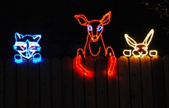 Join the tradition: Holiday Lights at Shore Acres
